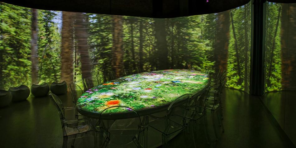 壁纸 风景 森林 桌面 950_475